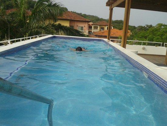 Paradise Oceanic Hotel : Piscina de la azotea