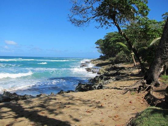 Natura Cabana Boutique Hotel & SPA : Beach