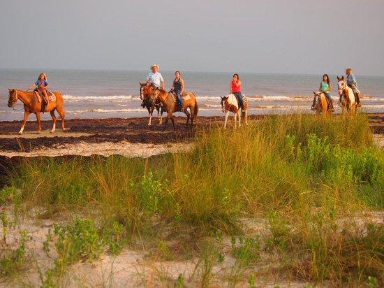 S-n-G Horseback Riding : Rob