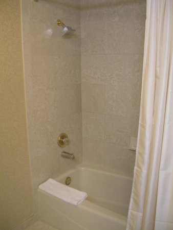 Monte Carlo Resort & Casino : Nice shower