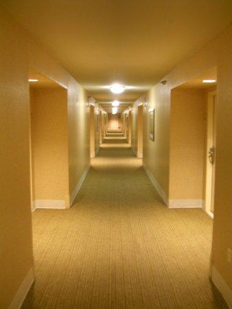 Monte Carlo Resort & Casino: Hallway