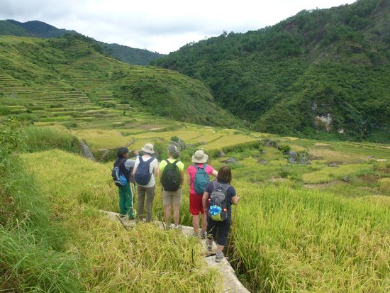 Uncharted Philippines Adventure Travel and Day Tours: Rice Terraces of the town of Piglisan in North Sagada