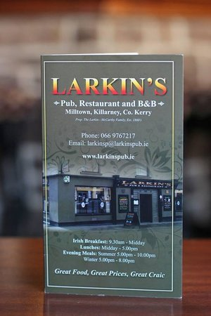 Milltown, Irlandia: Larkin's Evening Menu