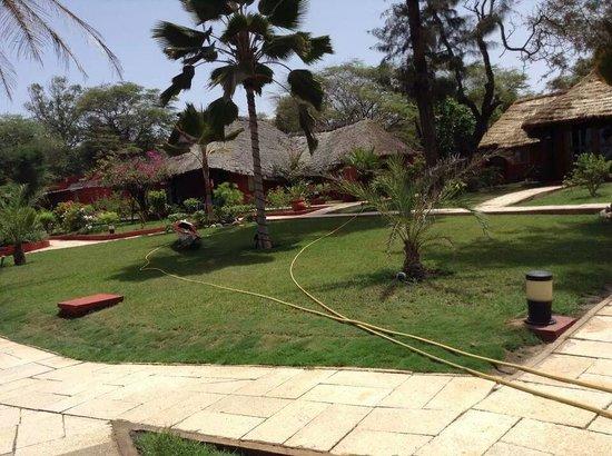Lookea Royal Baobab : jardin