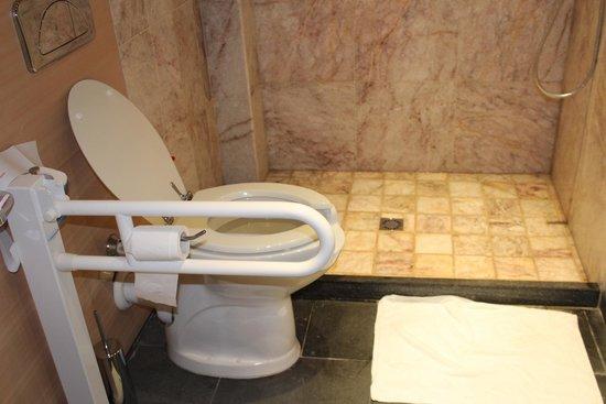 El Homs Palace : Chambre 011 - WC handi