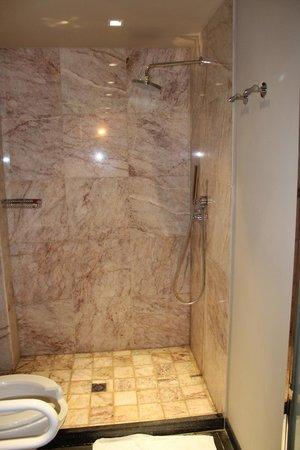 El Homs Palace : Chambre 011 - Douche handi