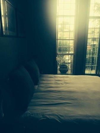 El patio 77, first eco-friendly B&B in Mexico City: bed was huge