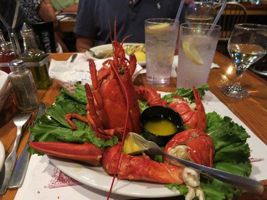 Quarterdeck Restaurant : Lobster Dinner