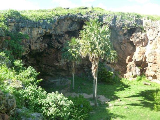 Maha'ulepu Heritage Trail : Interesting Cave
