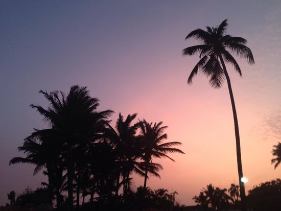 The Tropical at Lifestyle Holidays Vacation Resort: Sunset at the welcome party