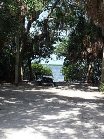 Fort de Soto Park Campground : The back end of our campsite
