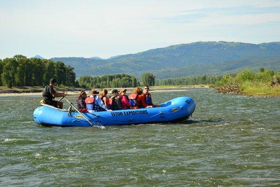 Jackson Hole Whitewater: Snake River float