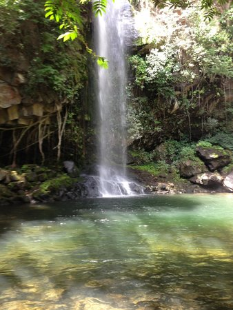 Rincon de La Vieja National Park: Waterfall at the end.