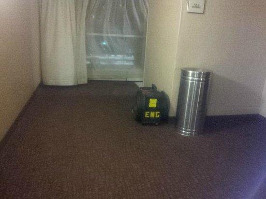 Sheraton Atlanta Hotel: Fan in hallway.