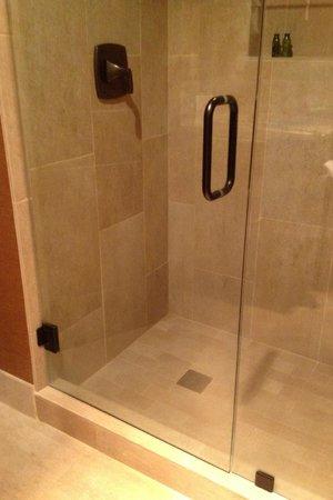 Bishop Creekside Inn: Bath room: Shower