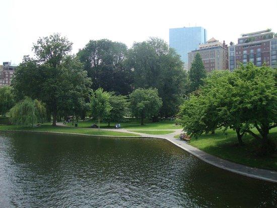 Boston Common : Public Garden