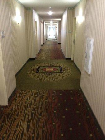 Hilton Garden Inn Cincinnati/Sharonville: Hallway