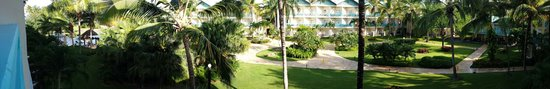 Dreams La Romana Resort & Spa: Ausblick ☆☆☆☆☆