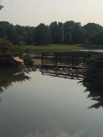 Chicago Marriott Southwest at Burr Ridge: pond with walking path behind the hotel