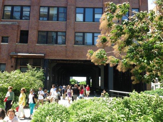 CityRover Walks NY: The Highline