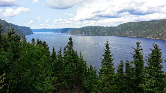 Tours Aventure Fjord et Monde Day Tours : Le fjord de l'Anse St Jean