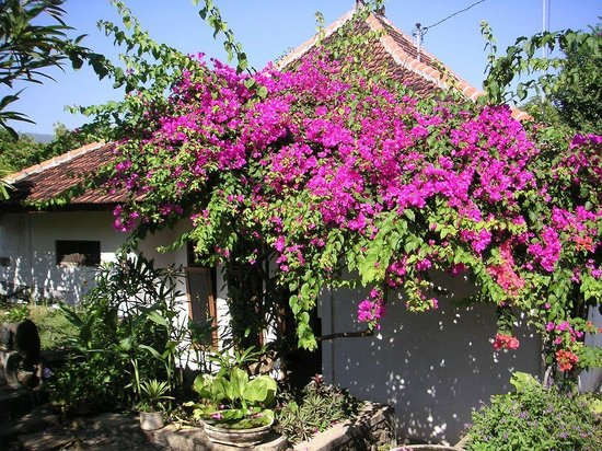 Sananda Bungalows: Mainhouse