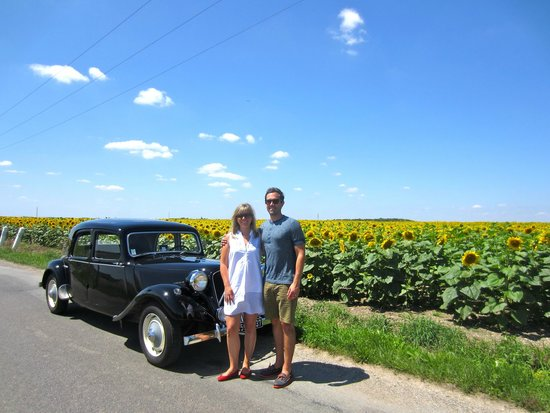 Loire Valley Time Travel Day Tours: Sunflowers