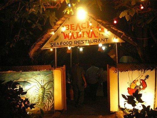 The Entrance to Beach Wadiya