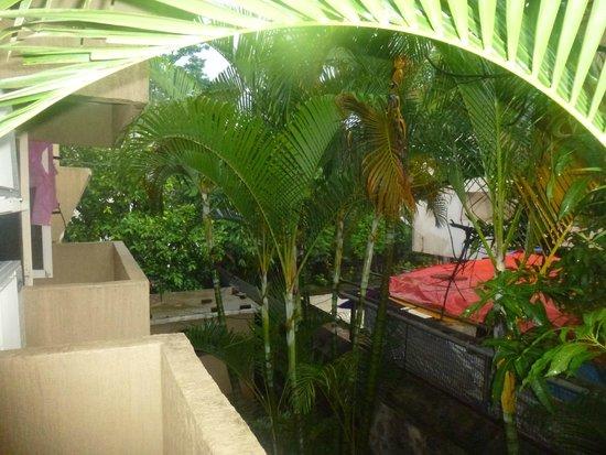 Ferreira Resort: View fro room