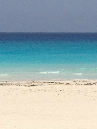 Live Aqua Cancun All Inclusive: View from the infinity board pool