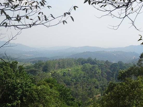 The Dusun: View from Emas house