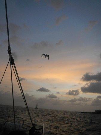Aqua Mania Adventures: Sunset on the Lambada