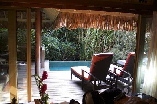 Vista desde nuestra habitaci n picture of for Garden pool bungalow intercontinental moorea