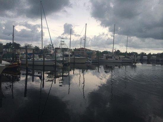 Pilot House : Nice view of the marina
