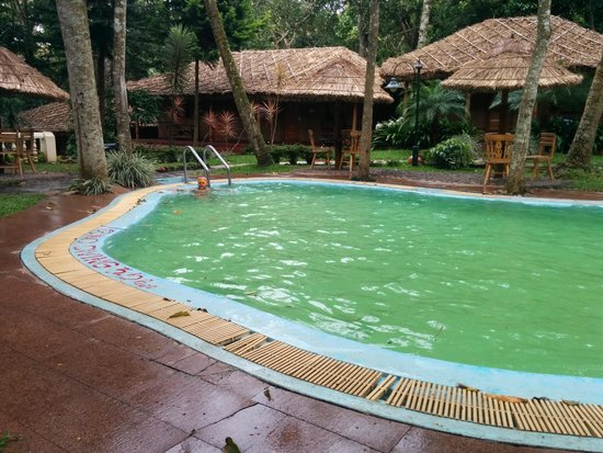 Thekkady - Woods n Spice, A Sterling Holidays Resort : Veiw from room