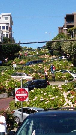 Lombard Street: 下からの写真