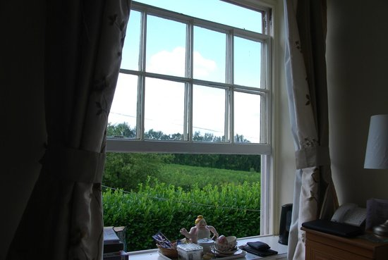 Glewstone Court : View from 'Poppy' room