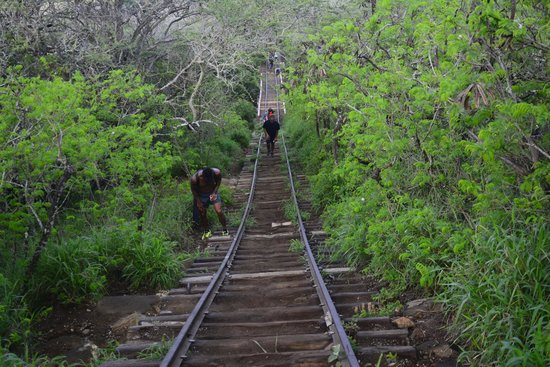 Koko Crater Trail: even those guys who look fit have to make a break