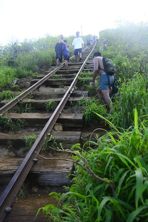 Koko Crater Trail: some people have to step aside to make a break