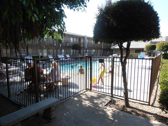 The Buena Park Hotel & Suites : Pool