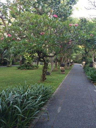 Padma Resort Legian : grounds