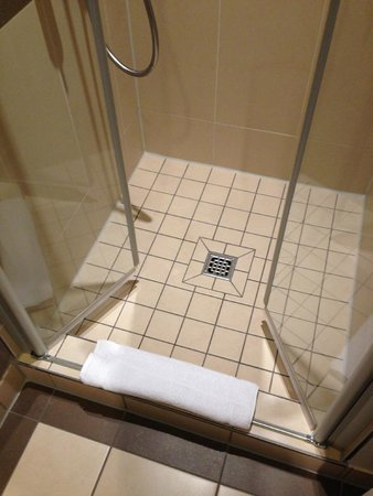Leonardo Royal Hotel Berlin Alexanderplatz: The shower had nice, warm water.