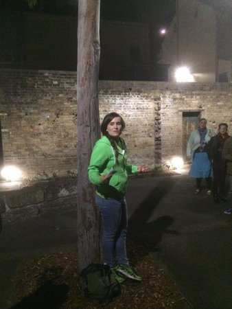 I'm Free Tours of Sydney: The Rocks Night Tour look out for the Kermit Green Hoody