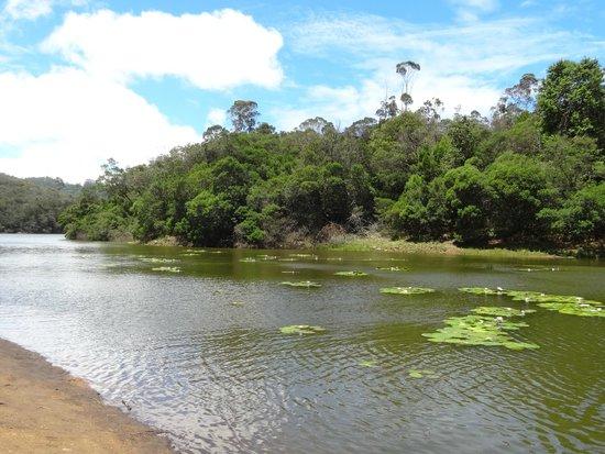 Berijam Lake: Lakeview