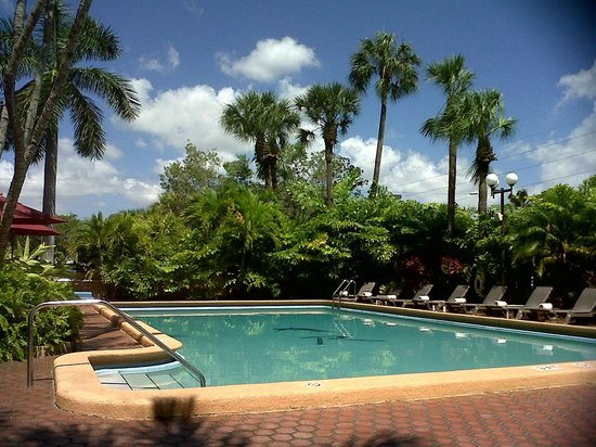 Regency Hotel Miami: The pool area