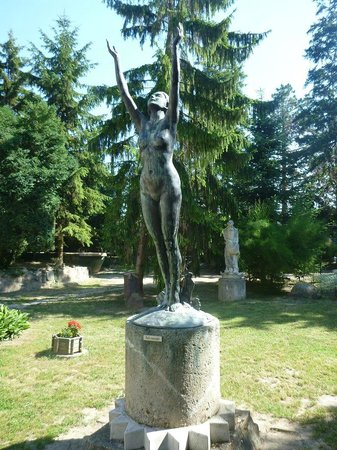szekesfehervar single guys The second element eri, 'man, men, lineage',  hungary is part of the european single market which represents more than 508 million consumers several domestic commercial policies are determined by agreements among european union members and by eu legislation.