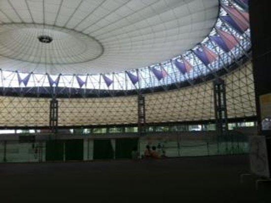Kumamoto Athletics Stadium (Umakana Yokana Stadium) : 美しいドーム