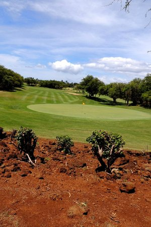 Maui Nui Golf Club: some downhills