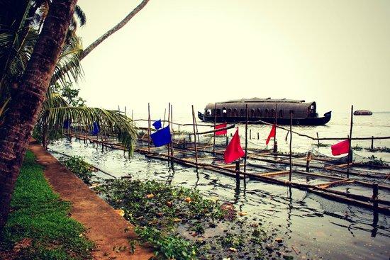 Coconut Lagoon: Grounds