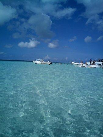 Viva Wyndham Dominicus Beach: piscine naturali